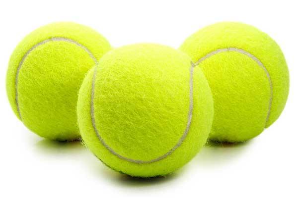 zabawki dla psa pilka tenisowa