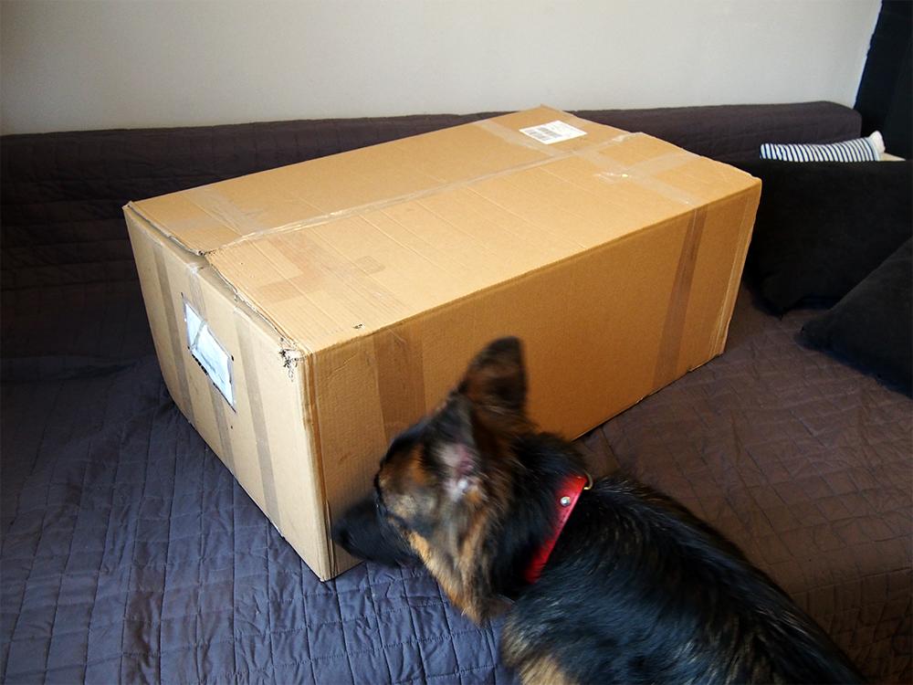 legowisko dla psa e-doggy