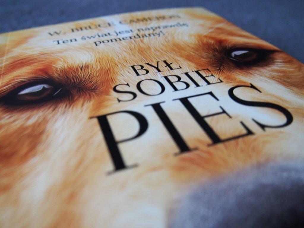 książka był sobie pies konkurs