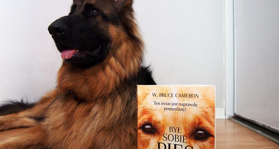 recenzja książki był sobie pies