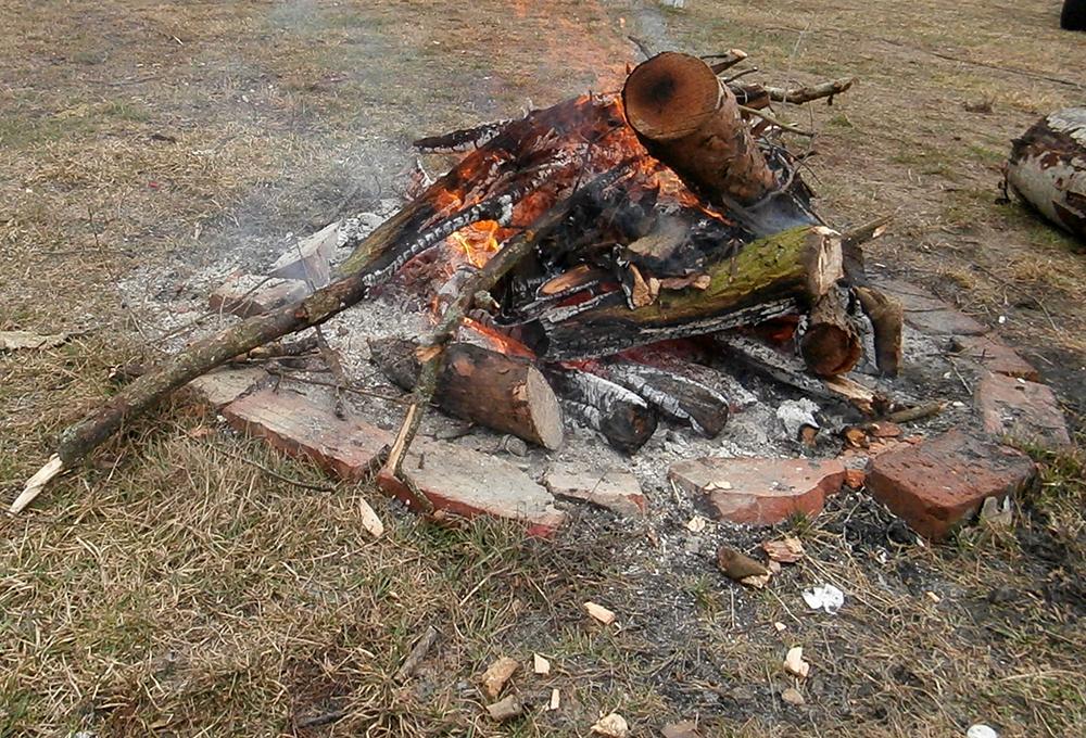 zawody canicross ognisko