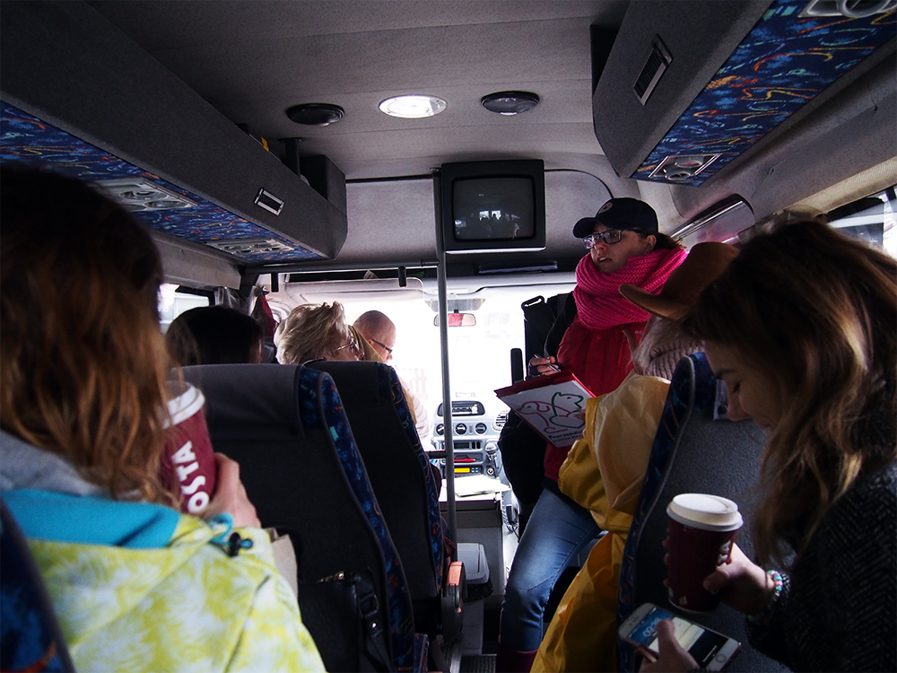 frontmani dla schronisk bus