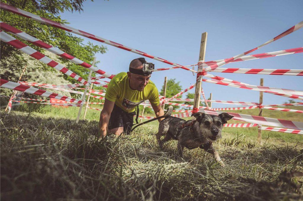 zalety biegania z psem