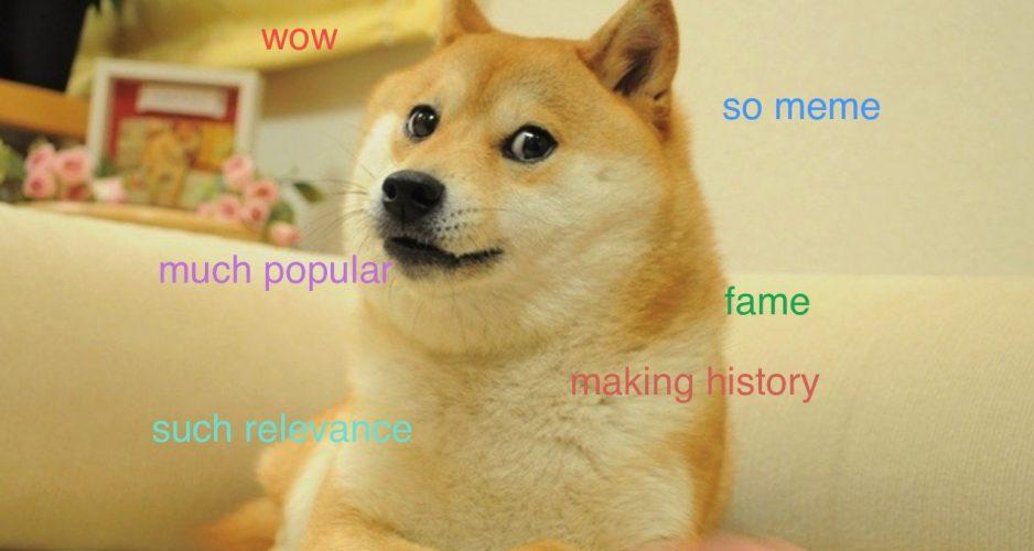psie internety perfection