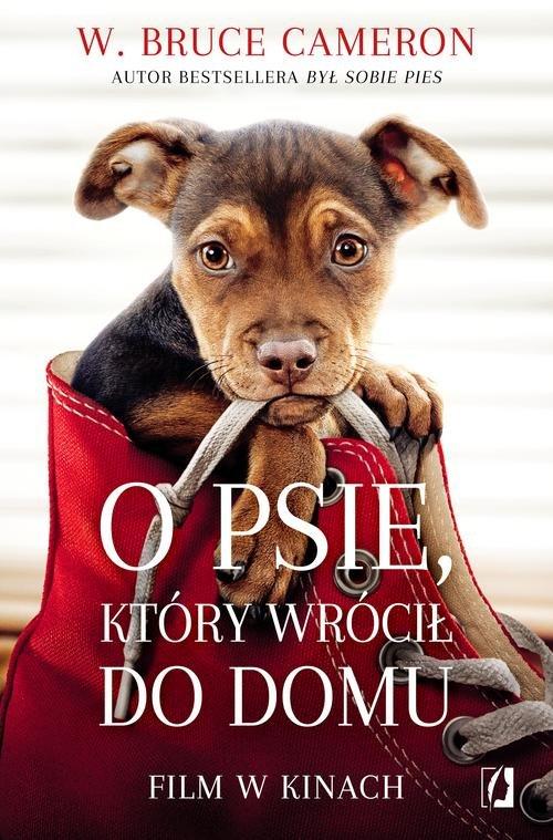 książki o psach o psie który wrócił do domu