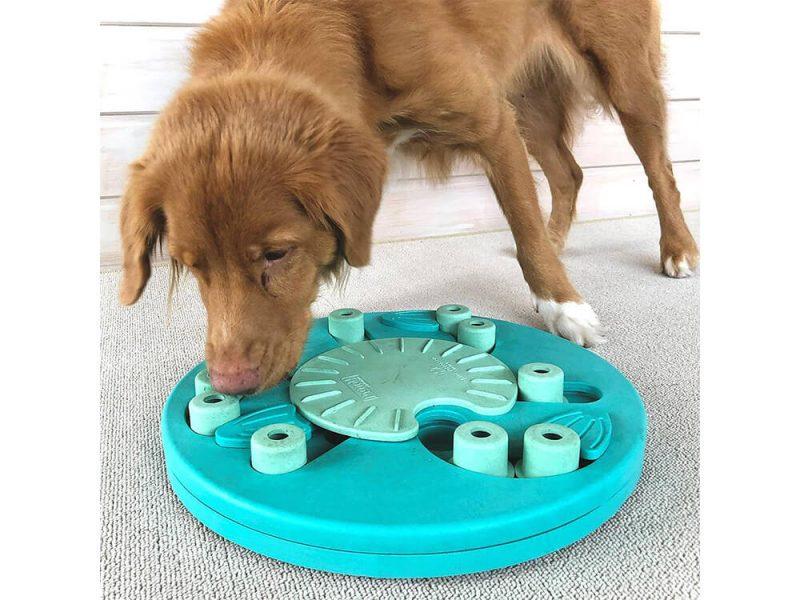Zabawka edukacyjna dla psa Worker Nina Ottosson (poziom 3)