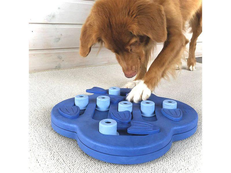 Zabawka edukacyjna dla psa Hide 'N Slide Nina Ottosson (poziom 2)