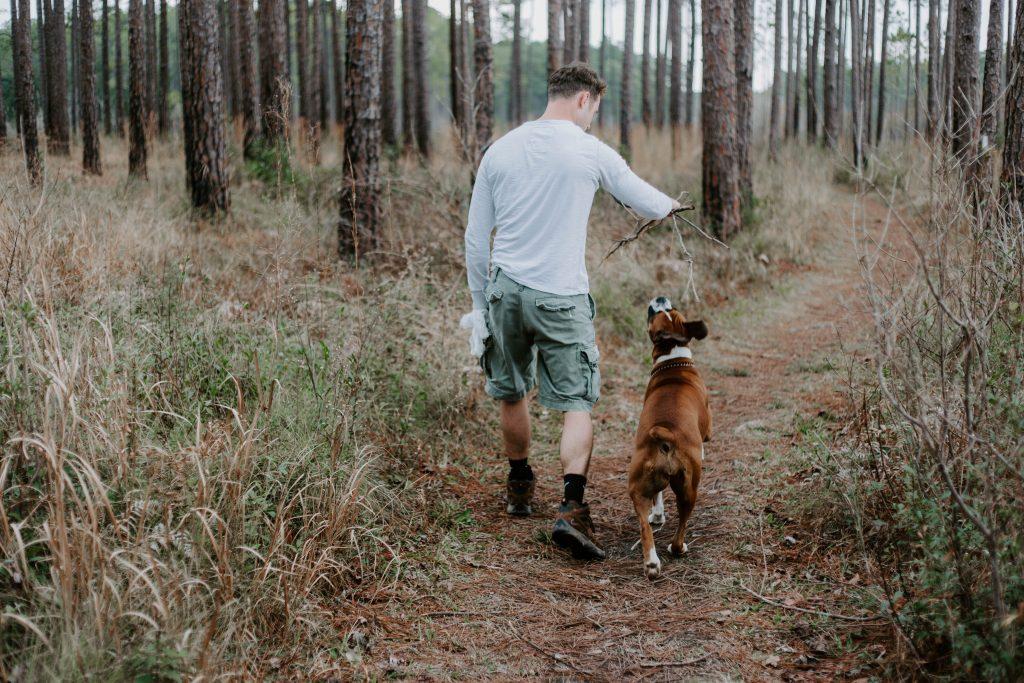 jak bawić się z psem zabawa